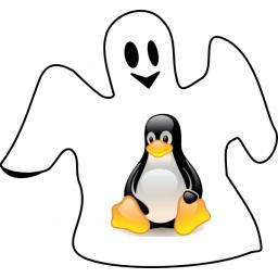 Otkriven ozbiljan propust koji većinu Linux sistema čini podložnim napadima